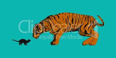 Cat Versus Tiger