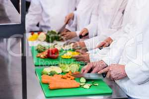 Close-up of chefs chopping vegetables