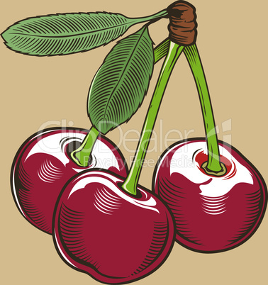 Cherry in vintage style.
