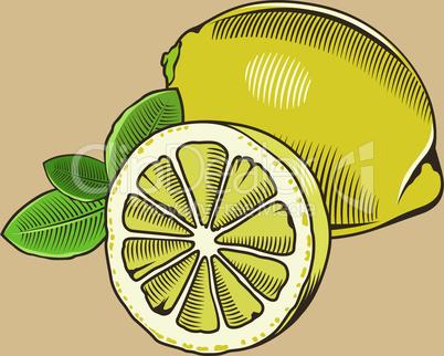 Lemon in vintage style.