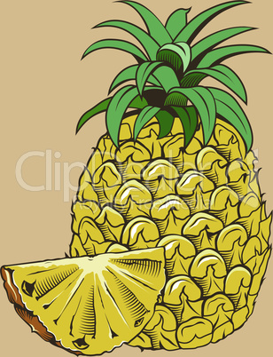 Pineapple in vintage style