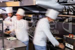 Team of chefs preparing food in the kitchen