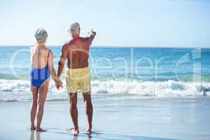 Senior couple in the water pointing the horizon