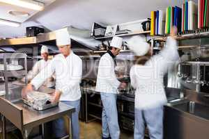 Team of chefs preparing food in the kitchen