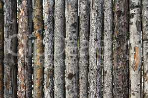 fence made of logs with bark as background