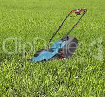 Lawn mower surrounded by high grass.
