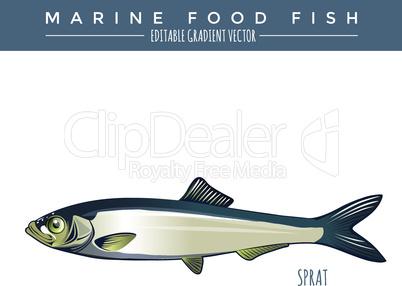 Sprat. Marine Food Fish