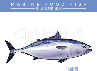 Tuna. Marine Food Fish