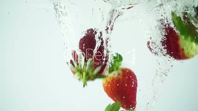 Ultra Slowmo Multiple Strawberries Splashed into Water on White Background