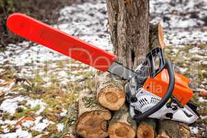 Chainsaw and cut tree branches.