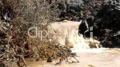 Brown muddy water stones brushwood
