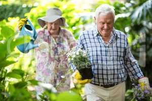 Senior couple with watering can and flower pots