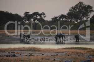Botswana 584