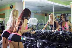 Sexy girlfriends choosing dumbbells for training
