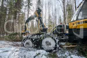 Forestry work. Image of modern log loader working