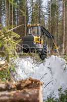 Vertical photo of logger in winter forest