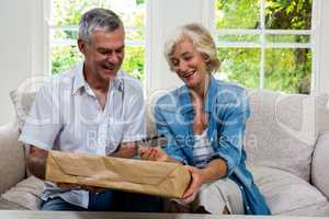 Happy senior couple holding parcel and debit card at home