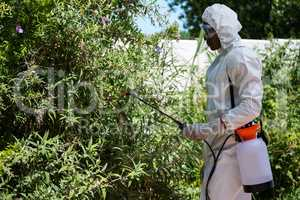 Man doing pest control