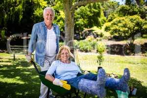 Senior couple playing with a wheelbarrow
