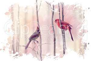 Two Northern Cardinals Watercolor
