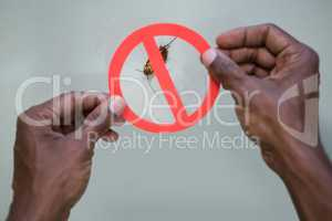 Hand holding a prohibition sign on a dead cockroaches