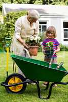 Granny and grandson holding flower pots at yard