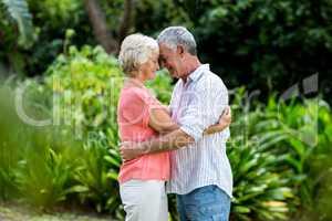 Senior couple embracing at yard
