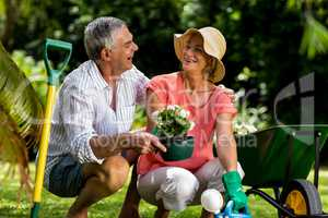 Senior couple holding flower pot in yard