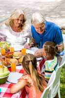 Grand chidren with grandparents having lunch at lawn