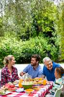Family talking while having lunch at lawn