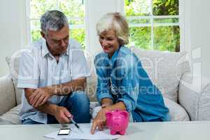 Happy senior couple calculating savings at home