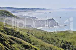 Foggy morning at Bodega Bay, Sonoma County, California's Pacific Coast