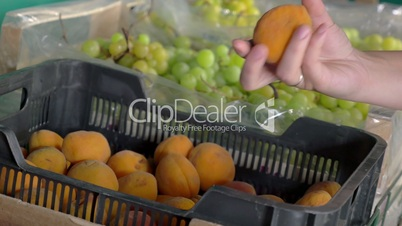 Woman taking apricots from the box in grocery