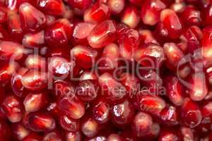 Backdrop from Fresh Pomegranate Seeds