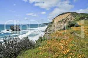 Pacific Coastline near Arch Rock/Bear Valley trail in Point Reyes National Seashore