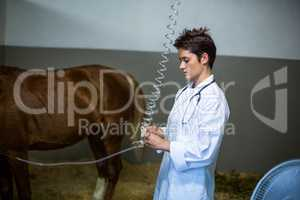 Portrait of woman vet treating a horse