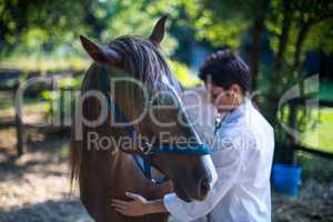 Woman vet examining a horse