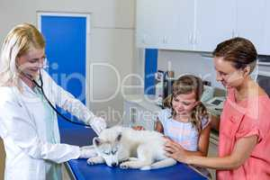 Woman vet examining a cute puppy with it owners
