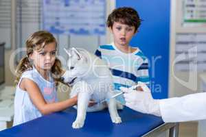 Little children holding a cute puppy and are afraid by the vet i