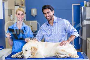 Woman vet and dogs owner smiling and posing