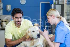 Smiling owner holding his dog during the examination