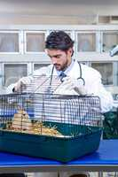 Vet opening the cage of a rabbit