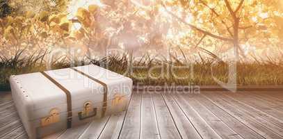 Composite image of suitcase