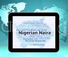 Nigerian Naira Represents Foreign Exchange And Banknote
