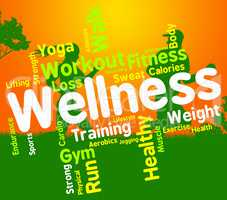 Wellness Words Indicates Health Check And Care