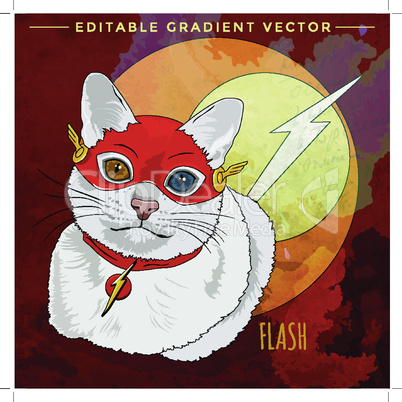 Cats superheroes. Flash