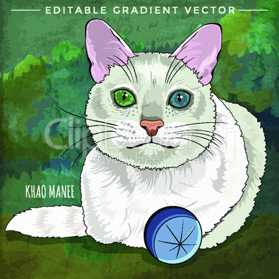 Khao Manee Cat. Vector illustration of a cat at home.
