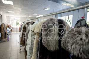 Image of fur coats on hangers in laundry room