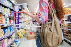 Close up view of woman doing grocery shopping with shopping bask