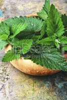 fragrant melissa leaves